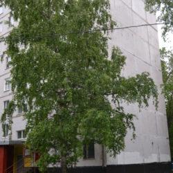 Ремонт балкона ул. Совхозная 18 к4